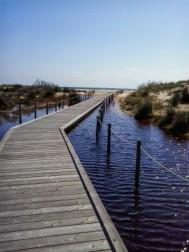 L'immagine di una spiaggia nella Sardegna Sudoccidentale